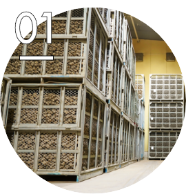 原料保管庫で品種・産地別に分類し、ジャガイモに適した温度で管理